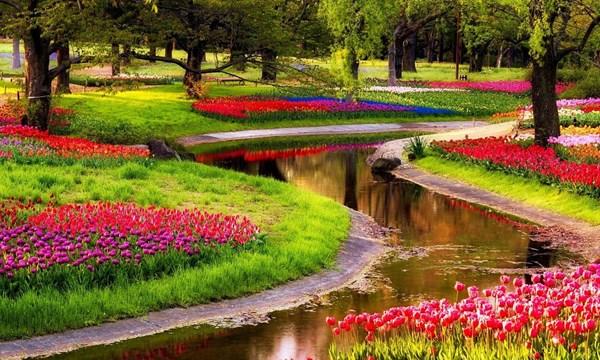 Những câu thơ về mùa xuân ý nghĩa